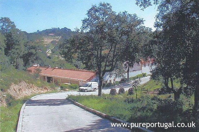 Kra550 ribatejo vineyard pure portugal for Lisbon cork co ltd fine cork flooring