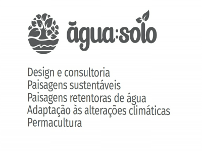 Agua Solo Water Strategies